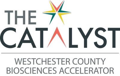 The-Catalyst-WCBAccelerator-2x