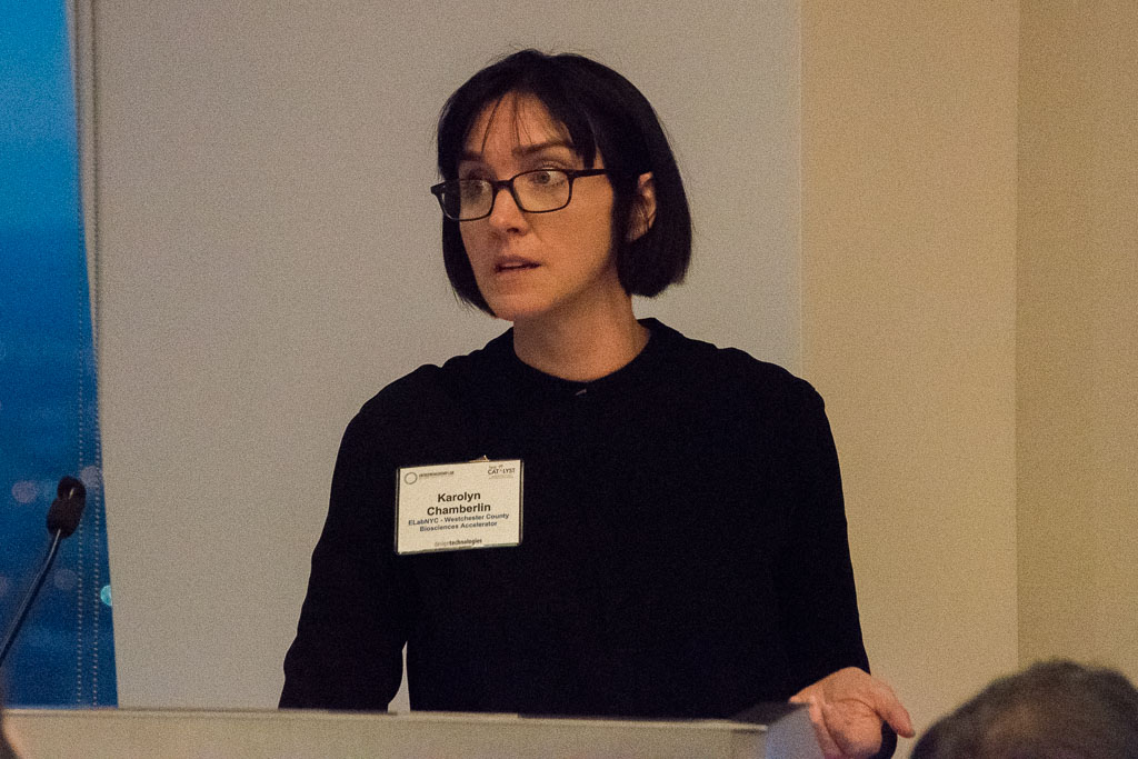 Karolyn Chamberlin, WCBA Head Of Mentorship